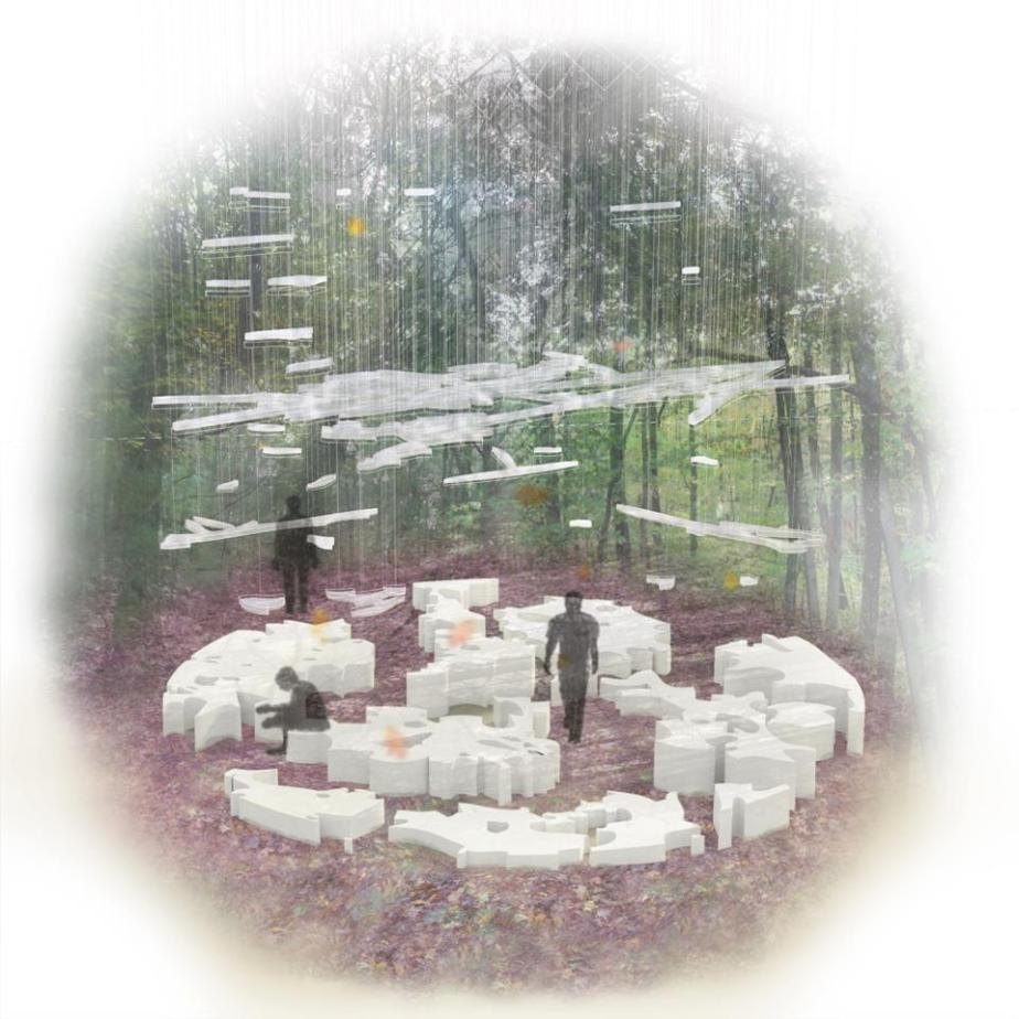 Walden Woods Mirroring Installation